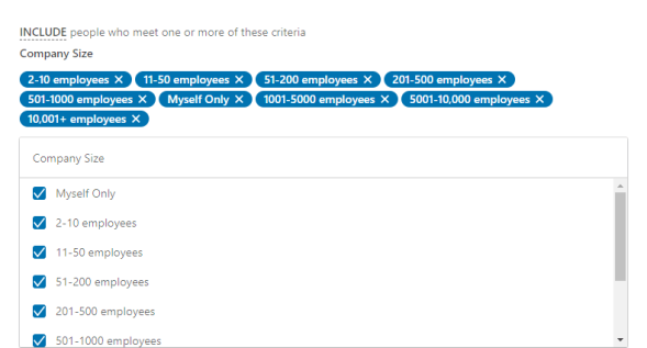 LinkedIn Company size criteria